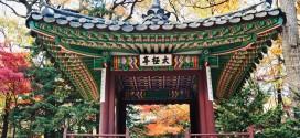 Tour du lịch Hàn Quốc giá rẻ 4N3Đ