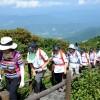 Hoạt động leo núi dã ngoại ở Hàn Quốc